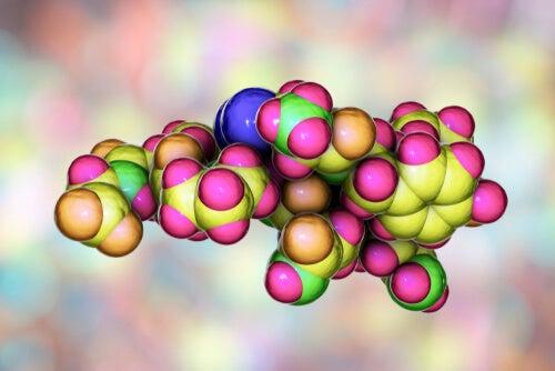 Oxitocinas: la hormona social