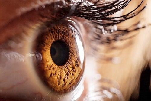 Enfermedades raras visuales: Lo que veas, no siempre lo creas