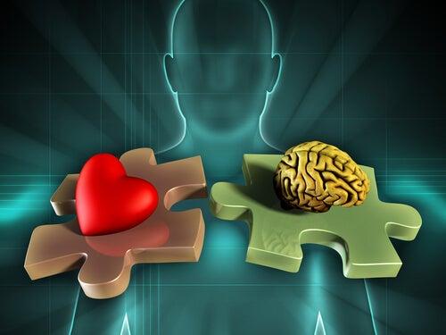 Hombre con corazón y cerebro en la gestión de las emociones