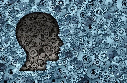cerebros y efectos psicológicos