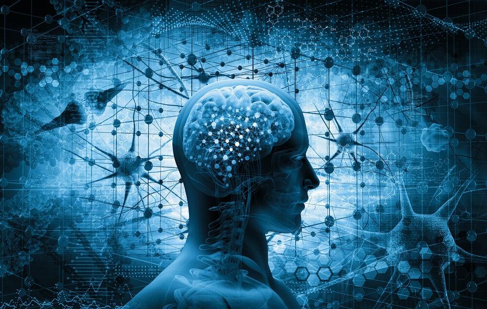 Cerebro que representa los conceptos erróneos sobre los traumas