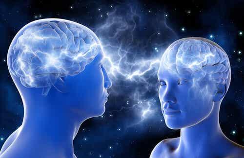 Conoce a las neuronas espejo