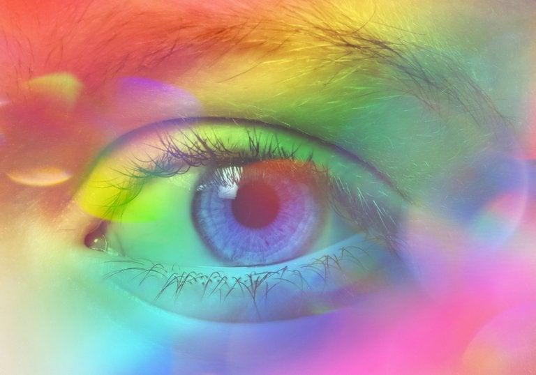 La sinestesia : ver sonidos, escuchar colores y saborear objetos