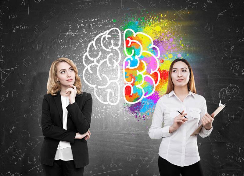 ¿Qué hemisferio cerebral domina tu vida?