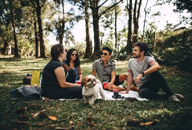 Grupo de amigos disfrutando la vida con calma
