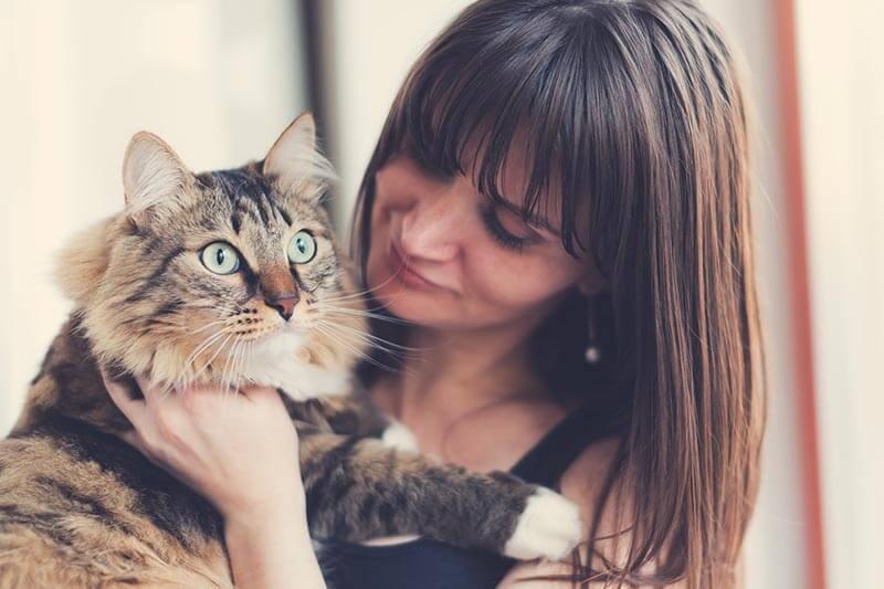 Aprender de la psicología felina