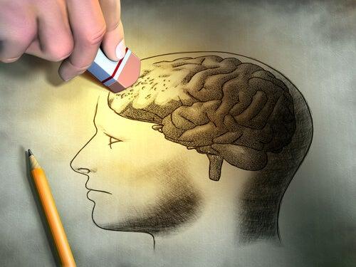 Goma borrando dibujo de la memoria