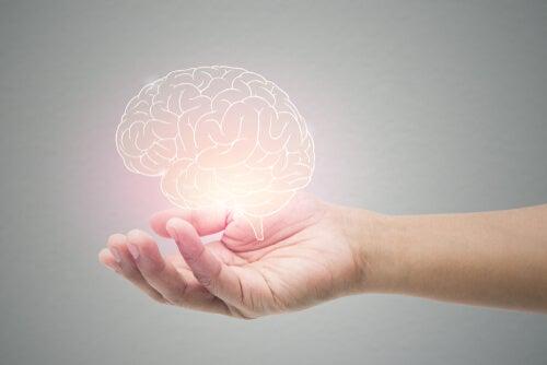 Mano sosteniendo un cerebro iluminado
