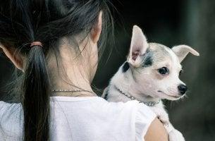 Abrazando a tu mejor amigo
