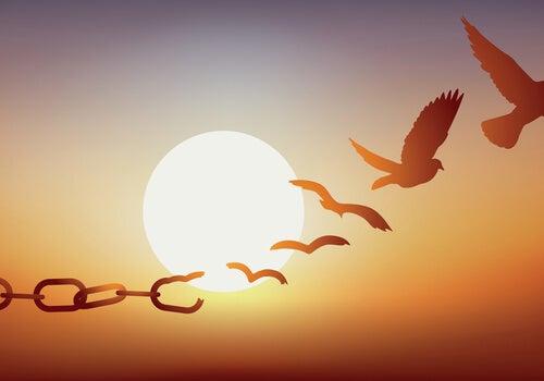 Cadenas transformándose en pájaros volando