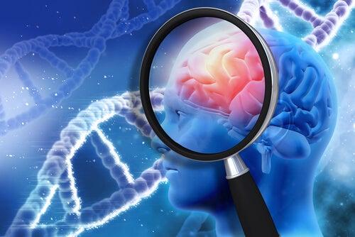 ¿Es verdad que sólo utilizamos el 10% de nuestro cerebro?