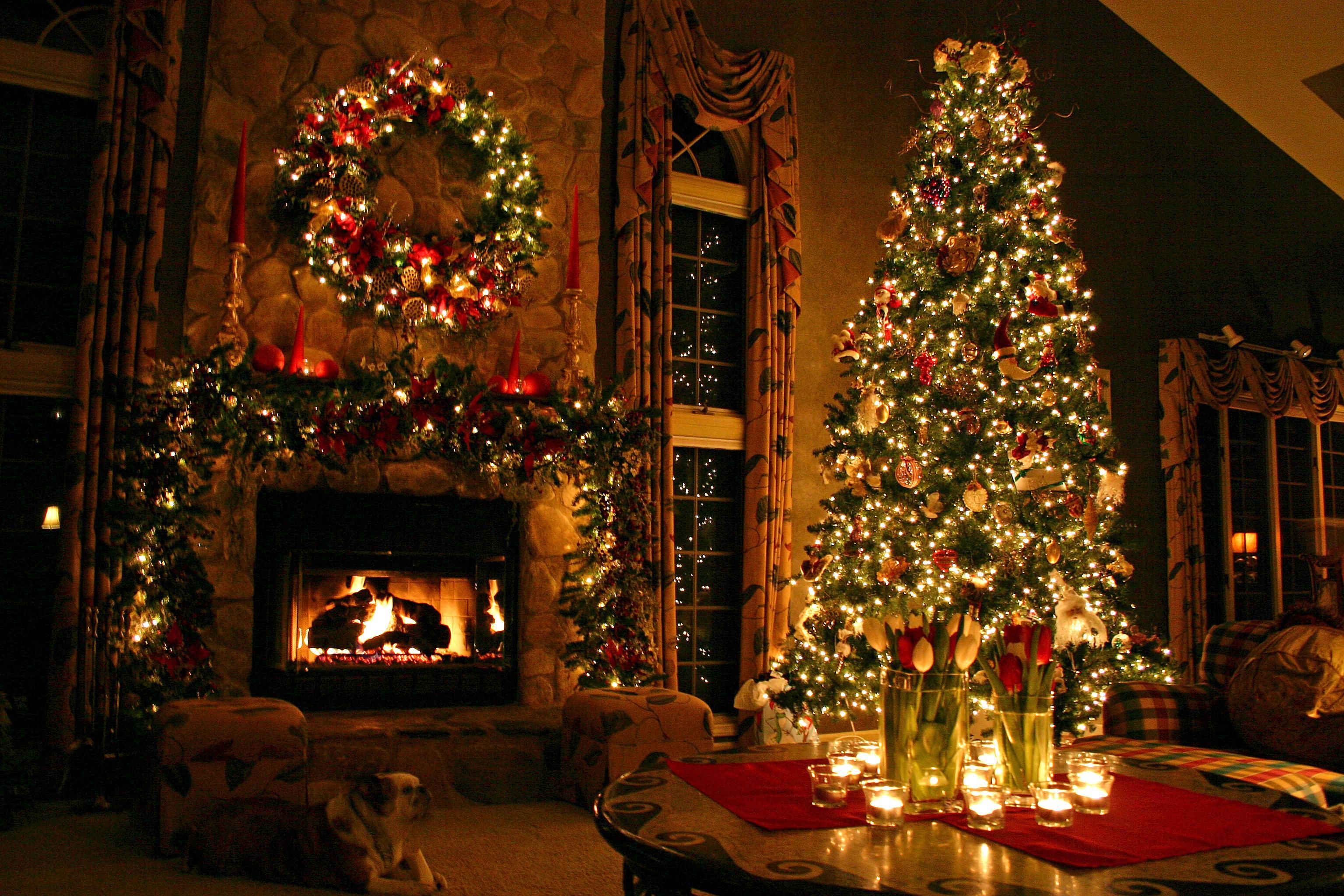 Quieres conocer la verdadera historia de navidad