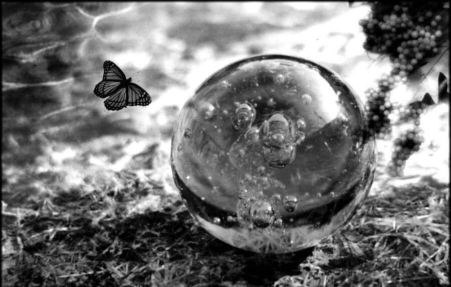 La fuerza de la fragilidad