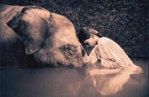 Niña arrodillada ante un elefante don humildad