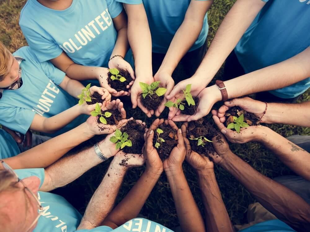 Beneficios del voluntariado en forma de manos con plantas