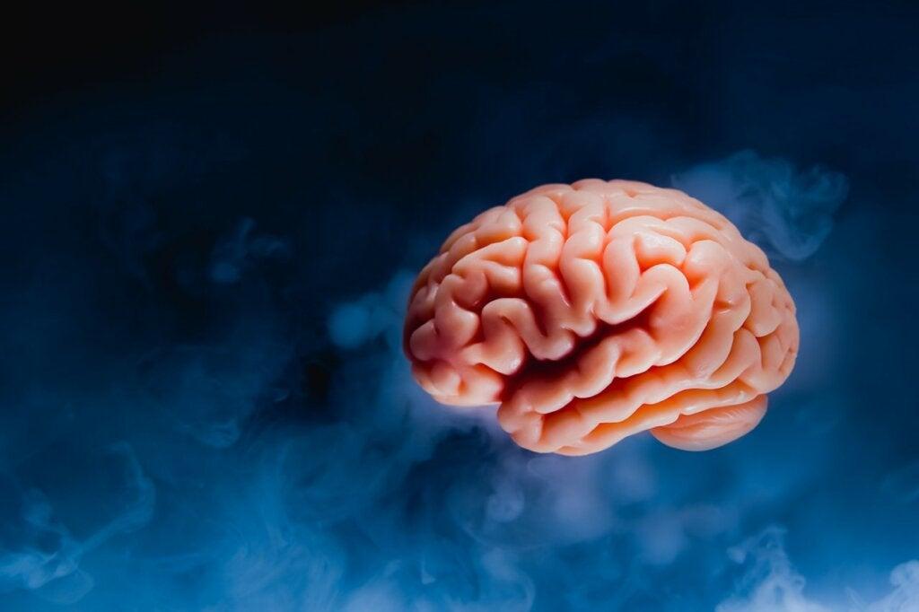 Cómo se reprograma la mente
