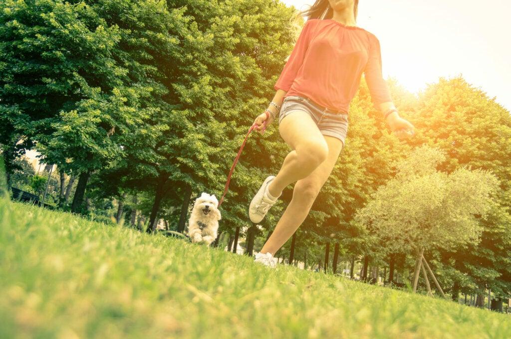 chica paseando perro