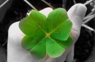 Cómo atraer a al suerte