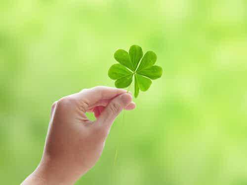 Cómo atraer a la suerte