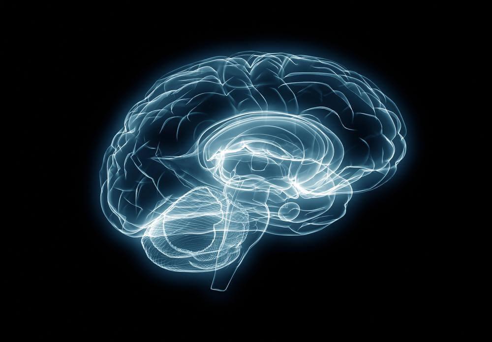 El cerebro ciego