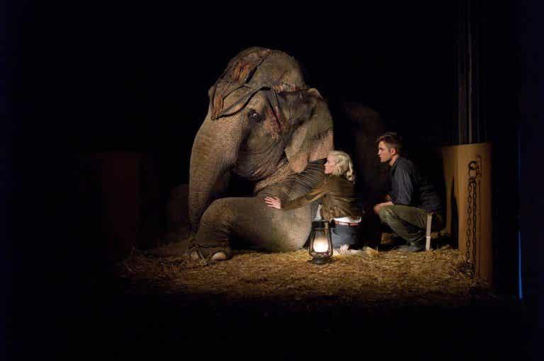 Agua para elefantes