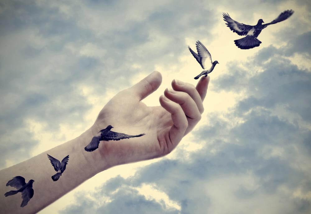 Pájaros volando saliendo de una mano