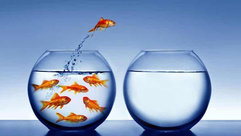 La vida es un proceso de cambio constante