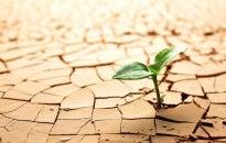 ¿Tienes una personalidad resiliente?