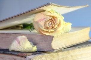 Beneficios de la lectura, libro con una rosa