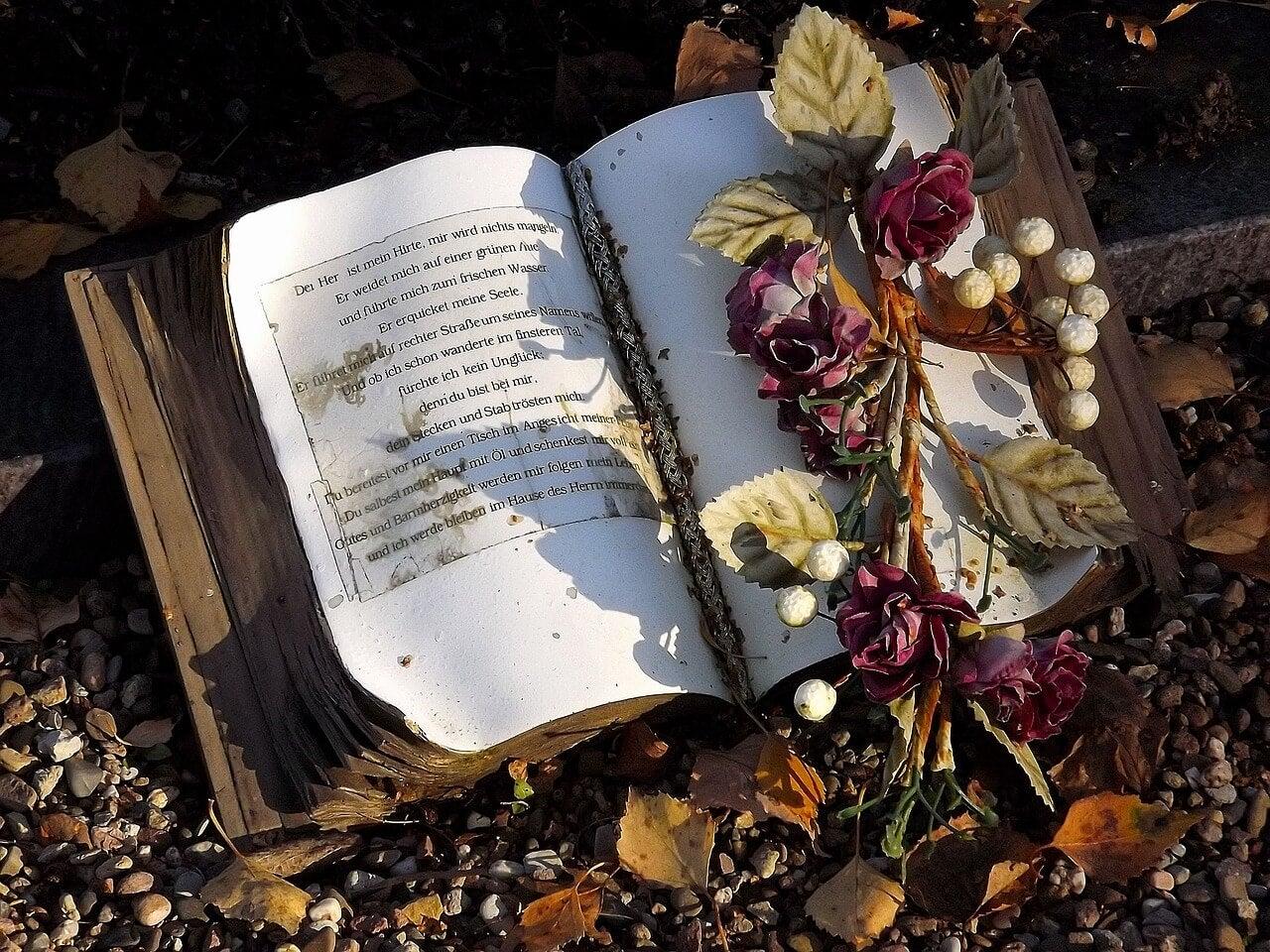 Libro y rosa en un cementerio