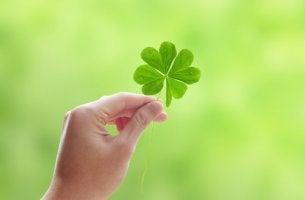 Trébol de 4 hojas símbolo del optimismo