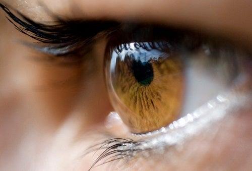 ¿Qué transmite nuestro color de ojos?