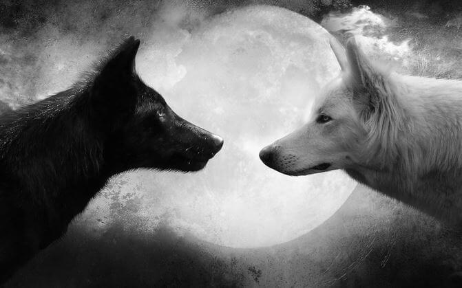 La Ira La Leyenda De Los Dos Lobos