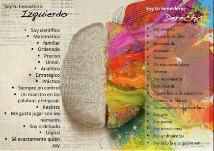 hemisferio derecho