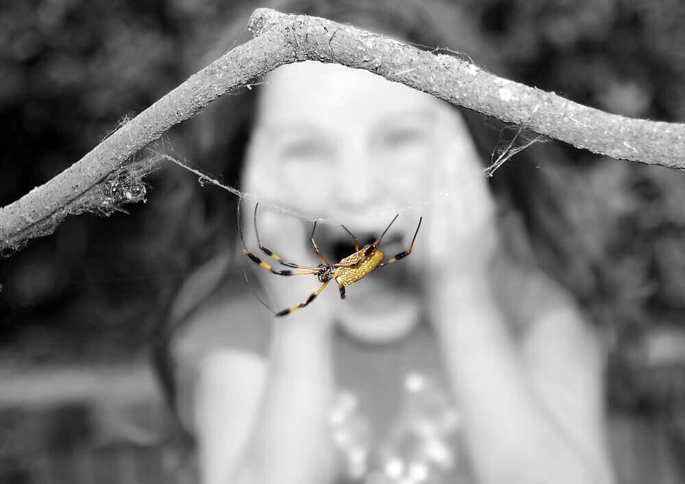 Niña con miedo a una araña por síndromes psicológicos
