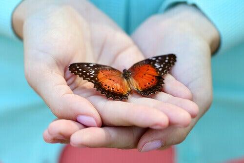Mano con una mariposa simbolizando agradecimiento