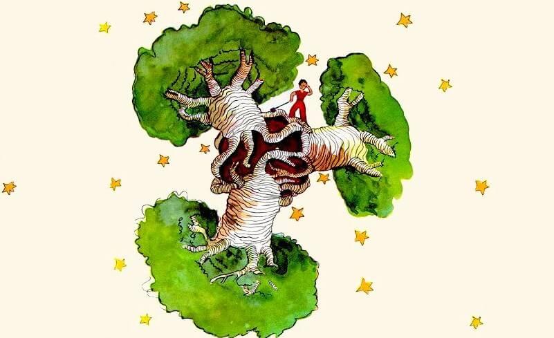 El principito en unos baobabs
