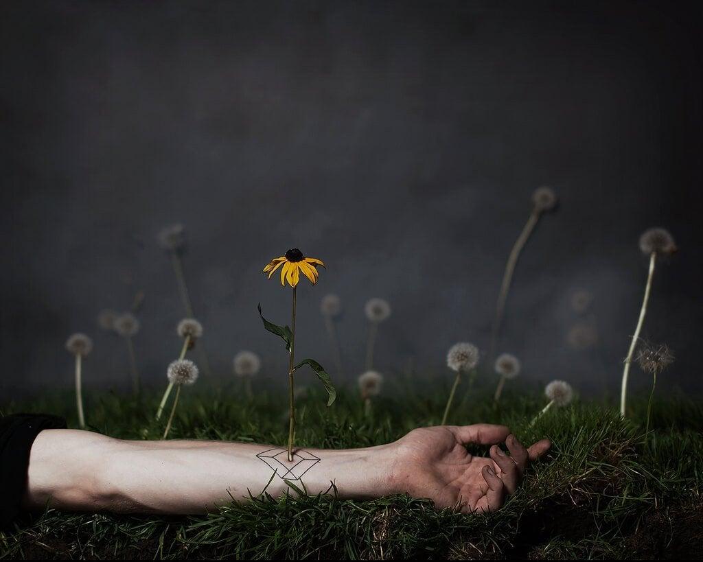 Flor creciendo de un brazo