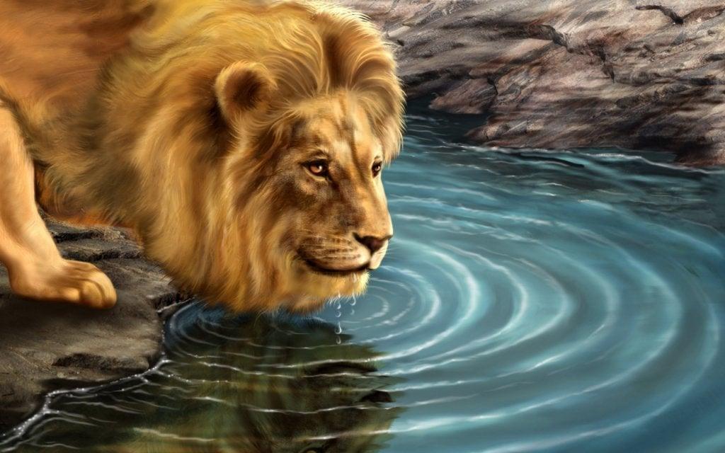 La historia del león y su reflejo