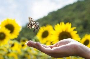 Mariposa en una mano simbolizando recuperar la esperanza