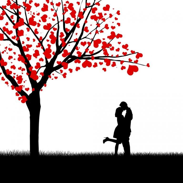 ¿Nos podemos enamorar de la persona que queramos? El experimento que garantiza el enamoramiento mutuo