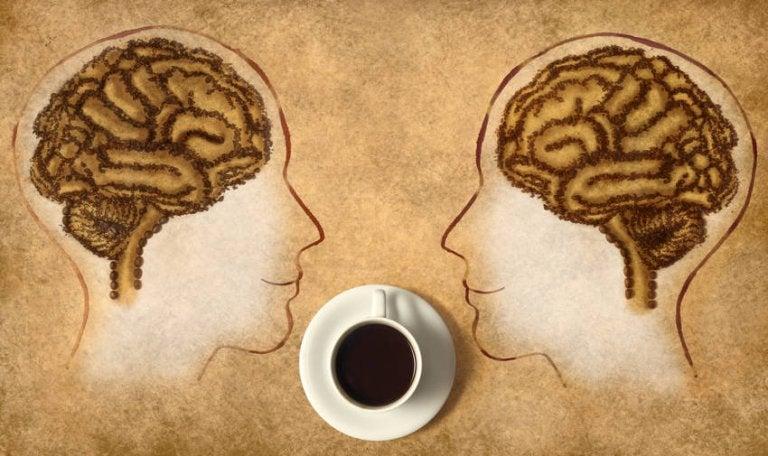 ¿Sabes cómo ayuda la cafeína a nuestra mente?