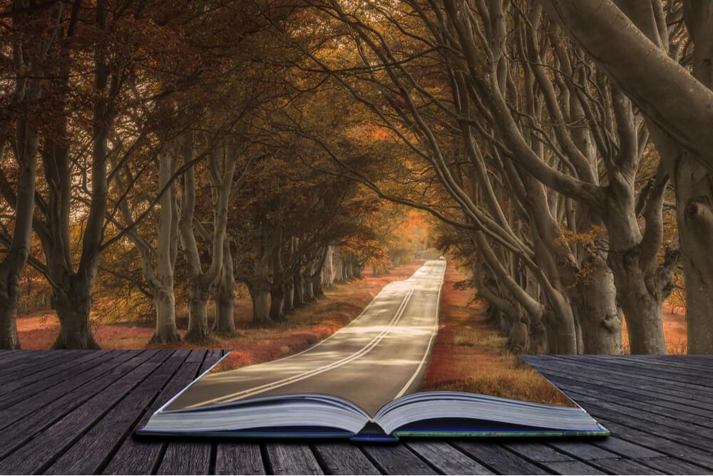 Libro del que sale un camino