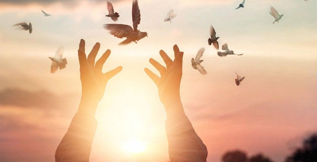 Manos abiertas y pájaros volando