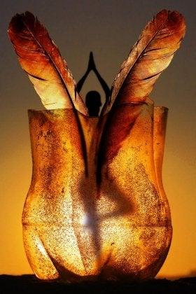 raices o alas (2)