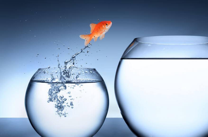 Los obstáculos son una buena oportunidad para crecer