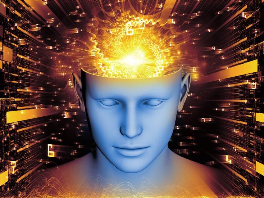 Neuroplasticidad: ¿Hasta qué punto es flexible nuestro cerebro?