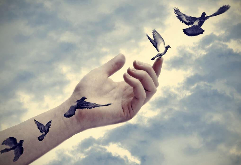 Mano liberando pájaros
