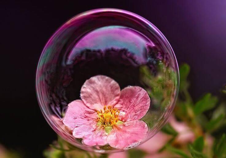 Los niños «burbuja» y los peligros de la sobreprotección