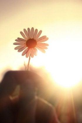Cambia el hábito…¡Habla de tus alegrías! Alegria-280x420